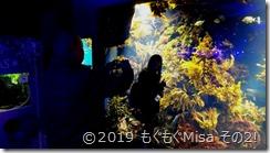 0319江ノ島